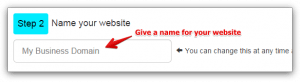SiteRubix Step 2 - Enter a Domain Name