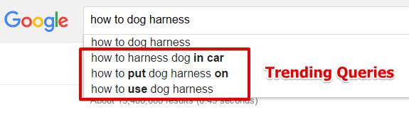 Alphabet Soup Technique for Dog Harness