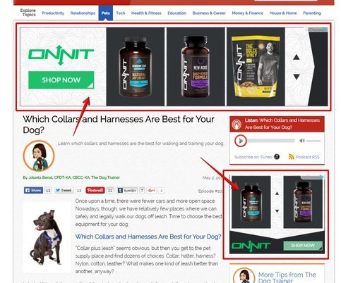 An Example of Adsense Advertising