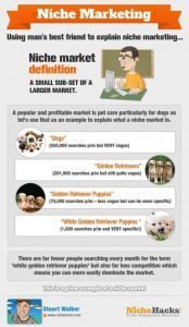 Infographic - Niche Marketing