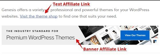 Example of Affiliate Link Placements