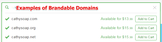 Examples of Brandable Domains