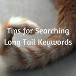 Tips for Searching Long Tail Keywords