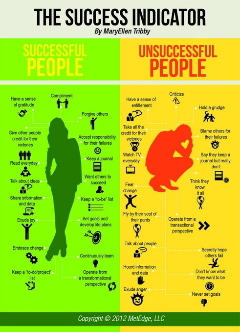 Infographic - The Success Indicator