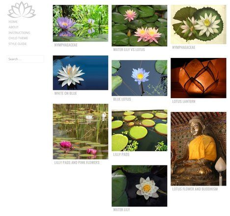 Water Lily - WordPress Theme for Photographer 1