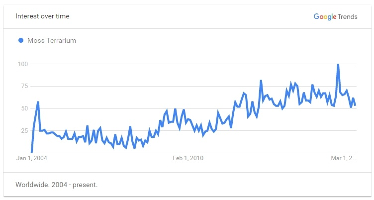 Google Trend for Moss Terranium