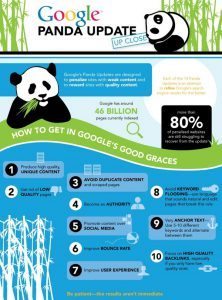 Infographic - Google Panda Update