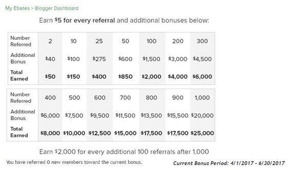 Referral Program Fees