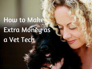 How to Make More Money as a Vet Tech