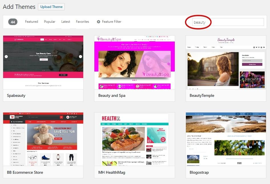 WordPress Theme Beauty