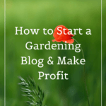 How to Start a Gardening Blog