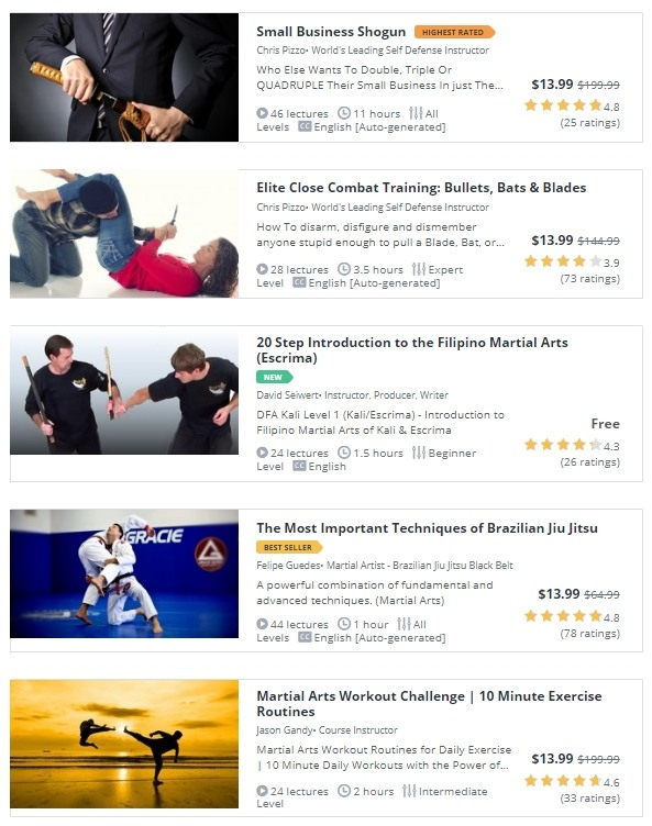 Martial Arts Courses on Udemy