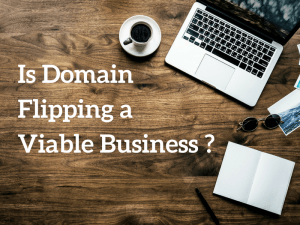 Is Domain Flipping a Viable Business