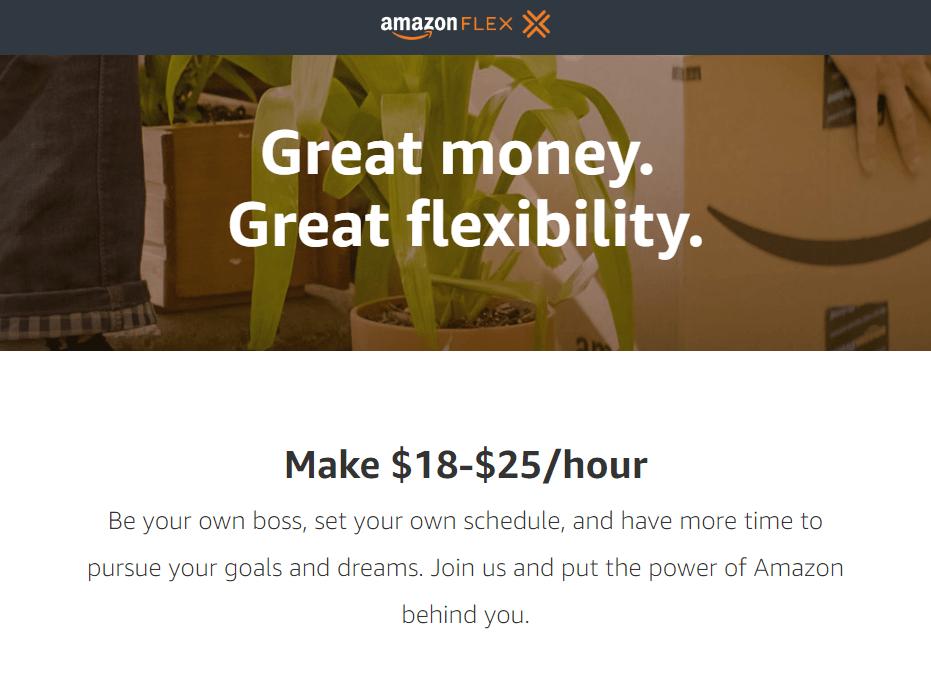 Aamzon Flex Homepage